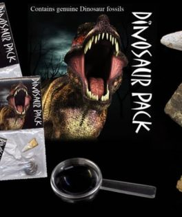 dinofossilpack